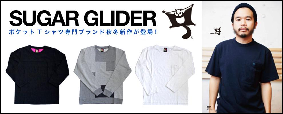 SUGAR-GLIDER-lo2