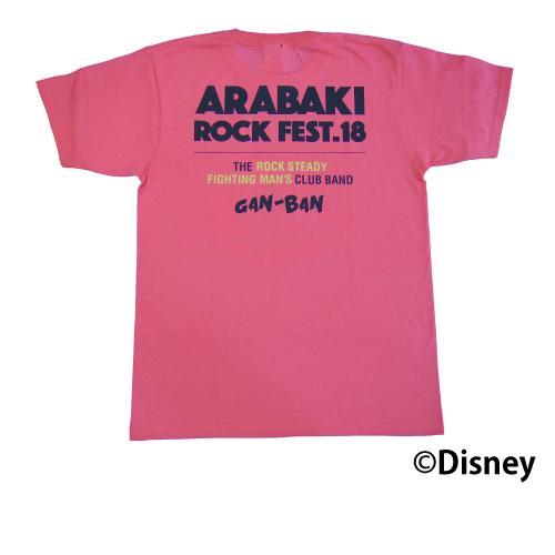 arbk18-disney-004