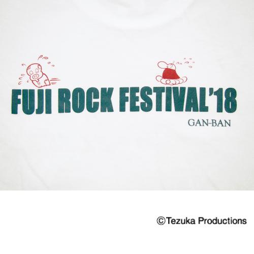fuji18-atom-012