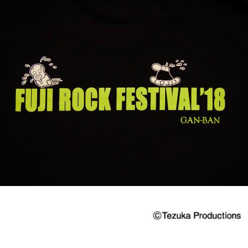 fuji18-atom-016